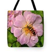 Beetle In A Rose 003 Tote Bag