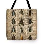Beetles Bugs Zoology Illustration Vintage Dictionary Art Tote Bag