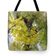 Before All The Leaves Fell Tote Bag