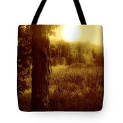 Before It Is Gone Tote Bag
