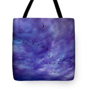 Before It Storms Tote Bag