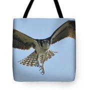 Before The Catch Tote Bag