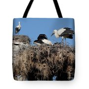 Before The First Flight Tote Bag