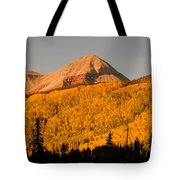 Before The First Snows Tote Bag