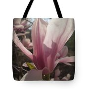 Before The Winds Blow Tote Bag
