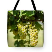 Before The Wine Tote Bag