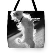 Begging Dog Black And White Tote Bag