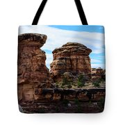 Beginning Of The Slick Rock Trail Tote Bag
