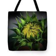Beginnings Sunflower Xiii Tote Bag