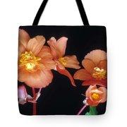 Begonia Buddies Tote Bag