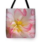 Begonia Pink Frills - Horizontal Tote Bag