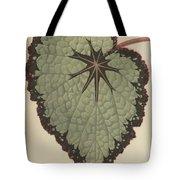 Begonia Rex, Variety Isis Tote Bag
