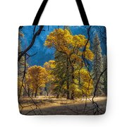 Behind The Branches Tote Bag
