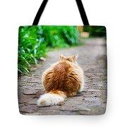 Behind The Cat Tote Bag