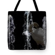 Behind The Fountain Tote Bag