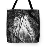 Behind The Tree-bw Tote Bag