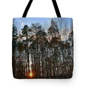 Behind The Trees Tote Bag