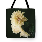 Beige Bold And Beautiful Tote Bag