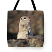 Belding Ground Squirrel Tote Bag