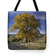 Belfry Fall Landscape 5 Tote Bag