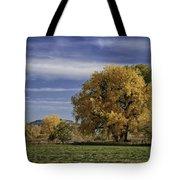 Belfry Fall Landscape 7 Tote Bag