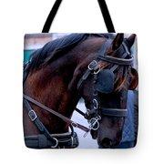 Belgian Beauty Tote Bag