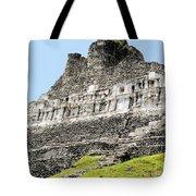 Belize Mayan Ruins  Tote Bag