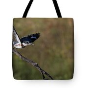 Belted Kingfisher Liftoff Tote Bag