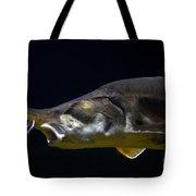 Beluga Sturgeon No 1 Tote Bag