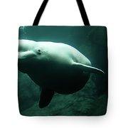 Beluga Whale 1 Tote Bag