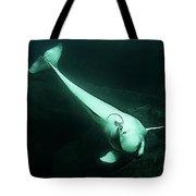 Beluga Whale 3 Tote Bag