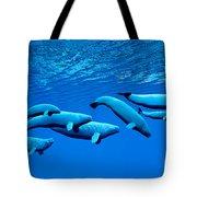 Beluga Whale Pod Tote Bag
