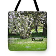 Bench Among Magnolia Tote Bag
