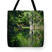 Bend Of The Ocklawaha River Tote Bag