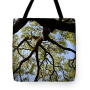 Beneath The Oak Tote Bag
