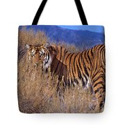 Bengal Tiger Endangered Species Wildlife Rescue Tote Bag