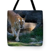 Bengal Tiger On The Prowl Tote Bag