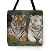 Bengal Tiger Team Tote Bag