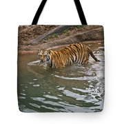 Bengal Tiger Wading Stream Tote Bag