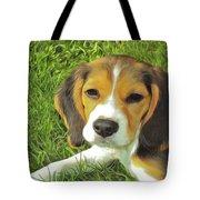 Benny Beagle Tote Bag by Harry Warrick