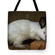 Benny Bunny Tote Bag