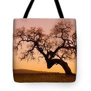 Bent Oak Tote Bag