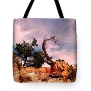 Bent The Grand Canyon Tote Bag