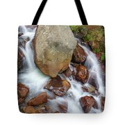 Benzai-ten, The Japanese Goddess Of Water, Music, Wisdom, And The Arts  Tote Bag