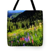 Berkeley Park Tote Bag