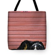 Bernese Mountain Dog Alertly Guarding Home. Tote Bag