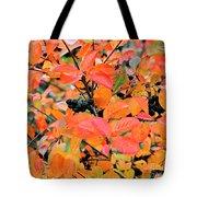 Berry Aronia Tote Bag
