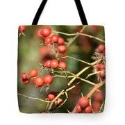 Berry Christmas  Tote Bag