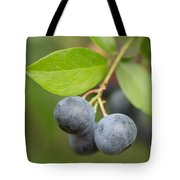 Berrydelicious Tote Bag