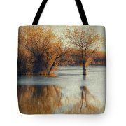 Beside Still Waters-color Tote Bag